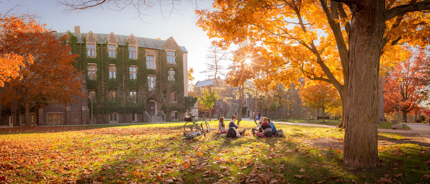 Students relaxing under a tree at McMaster University